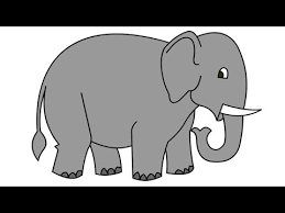 how to draw elephant asc kids youtube