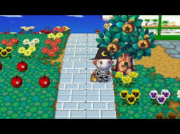 Animal Crossing Home Design Games 4 Ways To Make Bells In Animal Crossing Wild World Without Cheating