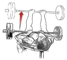 Dumbbell Bench Press Form Close Grip Bench Press For Triceps Gofitandhealthy
