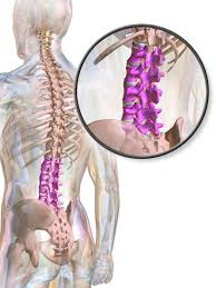 muskelschwäche beine lumboischialgie ursachen symptome behandlung