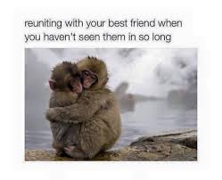 Cute Best Friend Memes - reuniting with your best friend when you haven t seen them in so long