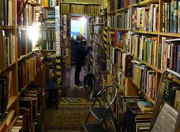 Armchair Books Life Is Beautful Bookshops Books And Benigni In Spite Of It