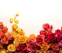 florist huntsville al local florists