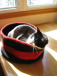 Cat Bed Pattern Ravelry Junebug U0027s Kitty Bed Pattern By Wendy Engstrom