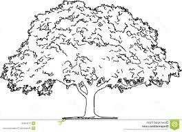 Oak Tree Drawing Hd Oak Tree Illustration Eps Pencil Sketch Isolated White