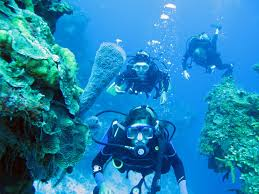 cancun scuba center mexico top tips before you go with photos