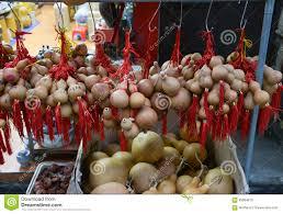 pumpkin wu lou symbol of health and wealth in feng shui stock china feng guangzhou health
