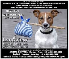 Lost Dog Meme - lost and found pets of longview texas home facebook