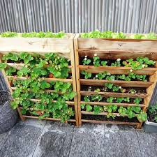 diy vertical garden planter vertical garden planters gardening guide