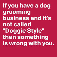 Dog Text Meme - dog grooming business funny pictures quotes memes funny