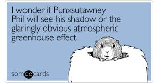 groundhog day cards groundhog day memes ecards someecards