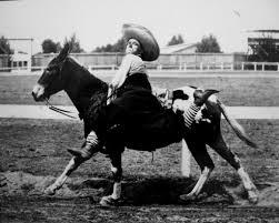 wilbur plaugher the greatest cowboy living today clovis roundup