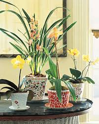 Design Flower Pots Decorative Flowerpots And Planters Martha Stewart
