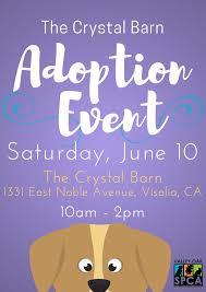 Crystal Barn Adoption Offsite At The Crystal Barn U2014 Valley Oak Spca