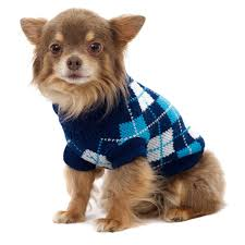 urbanpup blue argyle sweater medium