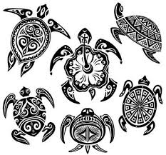turtle car stickers