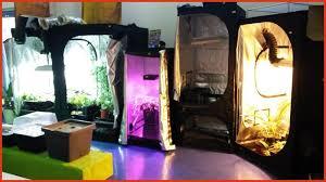 pack chambre de culture kit chambre de culture complet luxury pack plet 600w avec chambre de