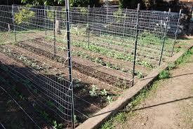 fence metal garden arbor home depot trellis wood trellis