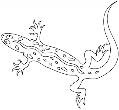lizard coloring page twisty noodle within lizard coloring pages