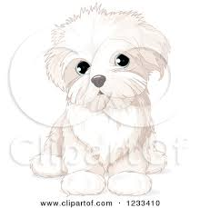 bichon frise dog pictures clipart of a cute bichon frise or maltese puppy dog sitting