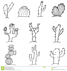 sketch doodle cactus black outline on a white background set of