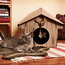 cat playhouse area hi cat lovers this cute cat playhouse for