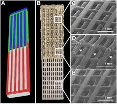 resolucion organica 5544 de 2003 notinet a 3d bioprinted complex structure for engineering the muscle tendon