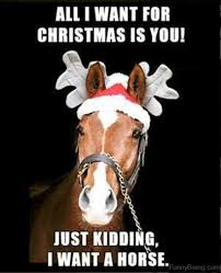 All I Want For Christmas Is You Meme - 80 mad horse memes pictures