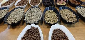 cupping coffee london saigon coffee company