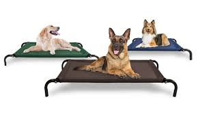 65 off on cot style raised pet bed groupon goods