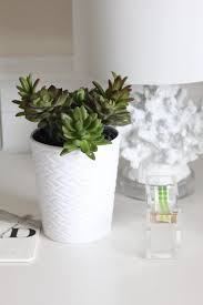 How To Make A Succulent Planter How To Make A Faux Succulent Pen Planter Ehow