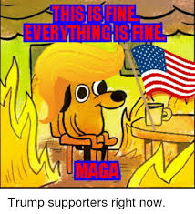 Everything Is Fine Meme - everything fine trump supporters right now politics meme on me me