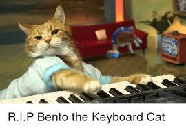 keyboard and keyboard meme on me me