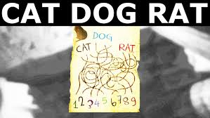 layers of fear cat dog rat puzzle solution youtube