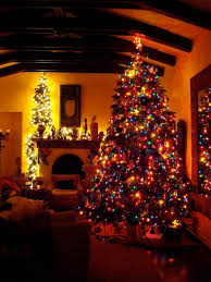 colored christmas tree lights 335 best o christmas tree images on pinterest merry christmas