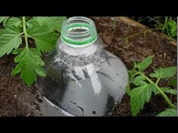 Diy Self Watering Herb Garden Diy Self Watering Garden Systems Youtube
