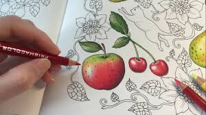 how i color an apple blomstermandala coloring book coloring