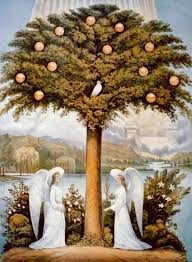 Judge A Tree By Its Fruit - 10 theological questions no young earth creationist can answer
