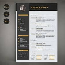 vita resume template buy resume templates graphic design resume template vita resume