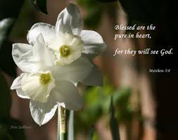 quote pure heart blessed are the pure in heart for they will see god ma u2026 flickr