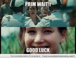 Hunger Games Memes Funny - 20 hilarious jokes that only true hunger games fans will understand