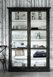 Glass Enclosed Bookcases 17 Best Ideas About Black Display Cabinet On Pinterest Display In