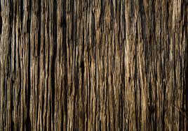 50 high qualtity wood textures for designers 20 texture source
