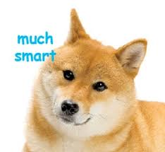 How To Make A Doge Meme - an analysis of doge speak might make you much smart the