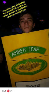 Amber Ls Meme - you have been visited by amber leaf alf send to 10 other people or