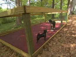 best 25 dog pen ideas on pinterest outdoor dog houses dog runs