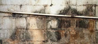 Basement Foundation Repair Methods by Basement Foundation Repair Basics Doityourself Com