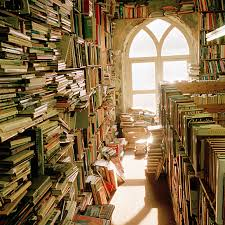 Or Books A New Type Why Second Bookshops Are Just My Type Telegraph