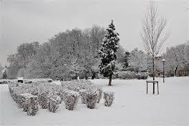 white odds 2016 will uk get snow profit accumulator