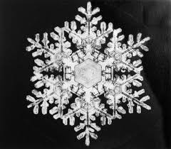 snowflake bentley museum miracles of beauty jericho u0027s wilson bentley chronicled snowflakes